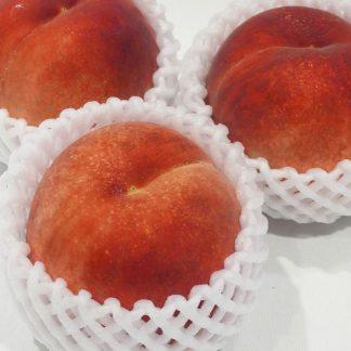 Frische japanische Weiße Pfirsiche
